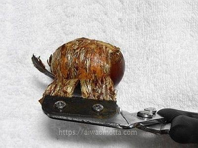 栗くり坊主を使った栗の剥き方の画像