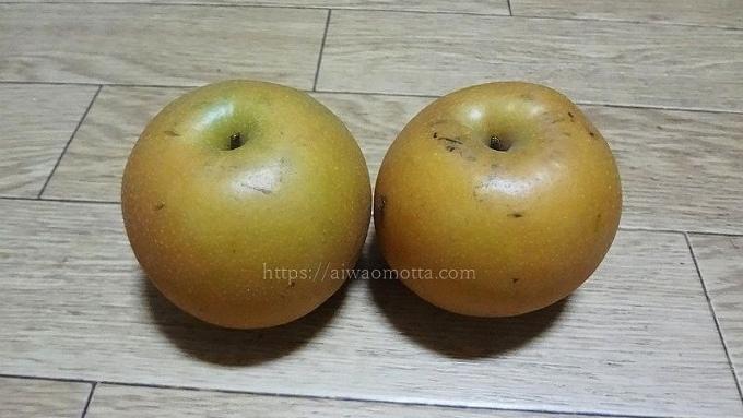 長十郎の梨、2個の画像