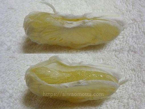 みかんの皮むき器、ムッキーちゃんで剥いた文旦の画像